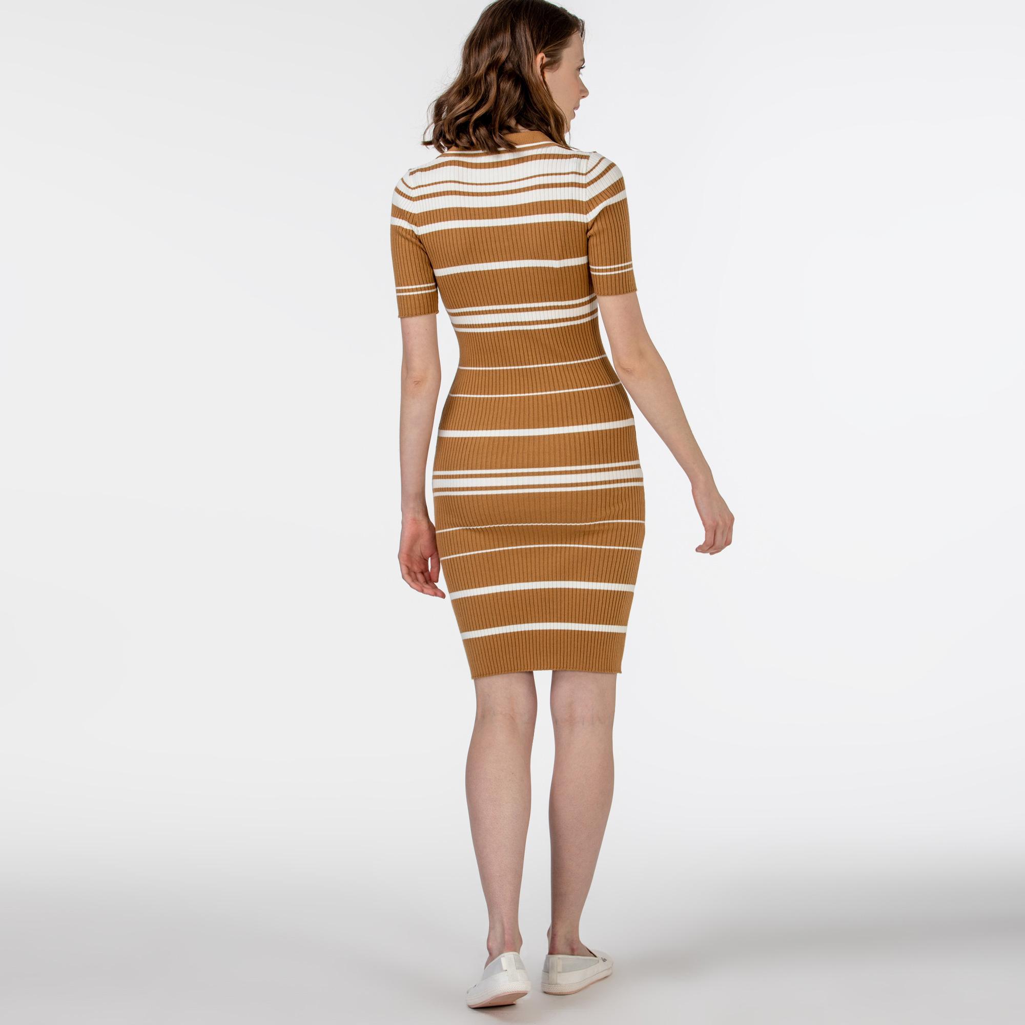 Lacoste Kadın Kısa Kollu Polo Yaka Çizgili Kahverengi Elbise