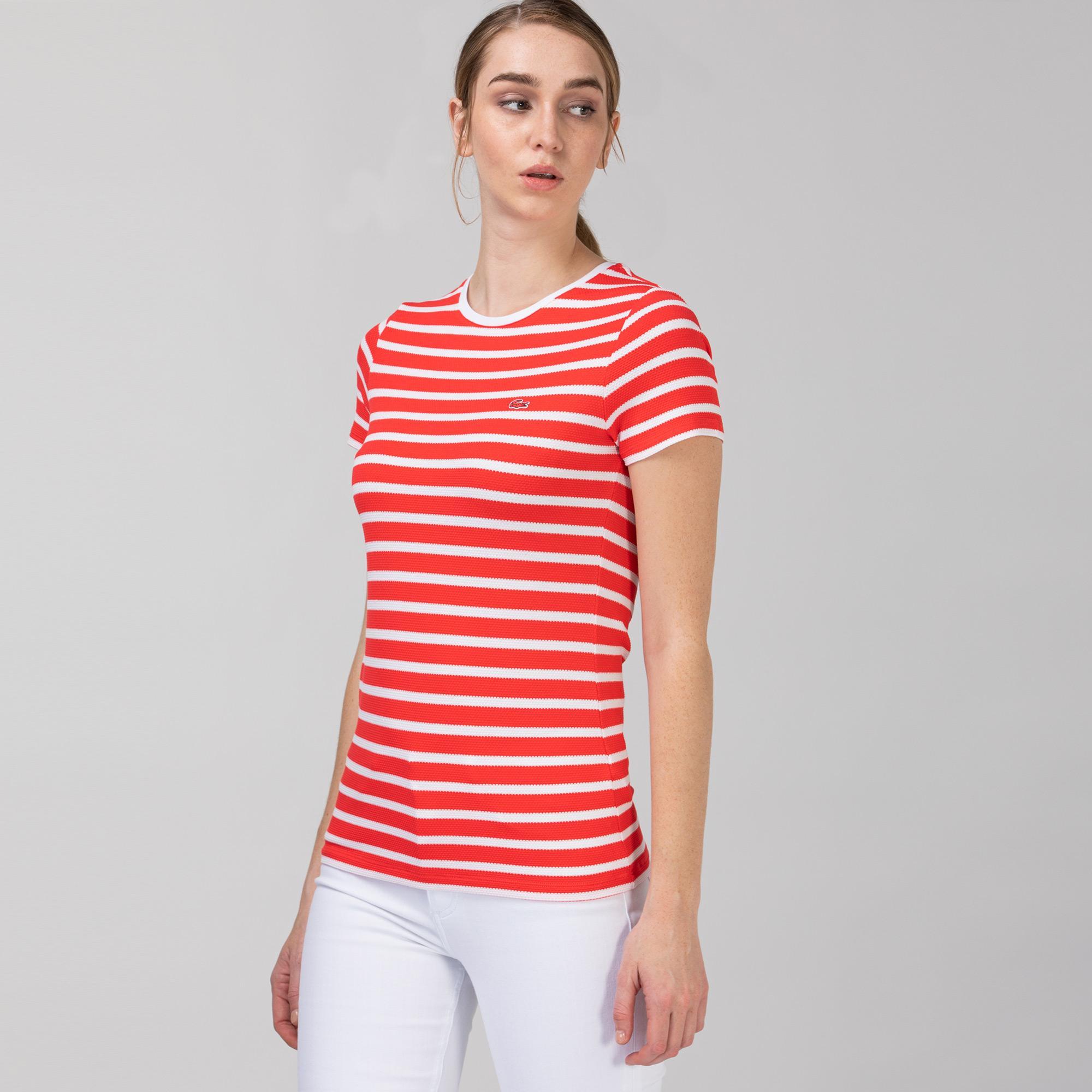 Lacoste Kadın Bisiklet Yaka Çizgili Pembe - Beyaz T-Shirt